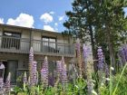 Vail rental home for skiing with mountain & creek view