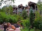 Walk to slopes condo in Snowmass Village, Colorado