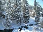 Creek & mountain view rental condo for skiing in Vail, Colorado