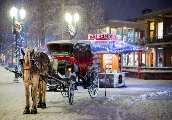Aspen Horse and Buggy Rides