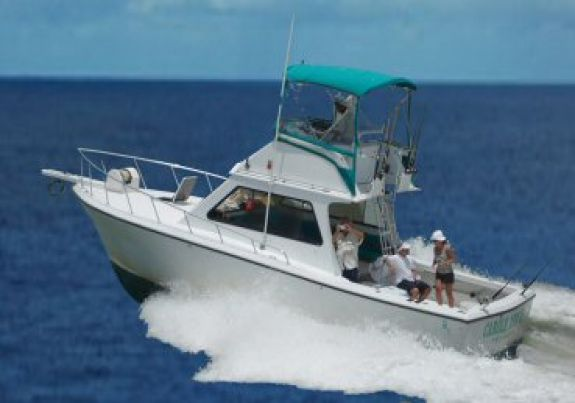 Marco Island Fishing Boat