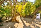 Captiva Island Rentals