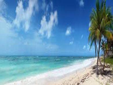 Anna Maria Island Florida Property Taxes