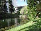 Pond View